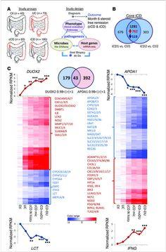 Pediatric Crohn disease patients exhibit specific ileal transcriptome and microbiome signature
