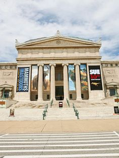 10 Secrets of Chicago's Field Museum including a secret proposal ring!