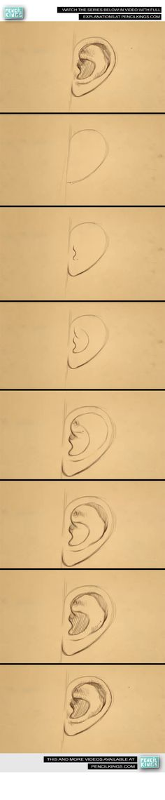 ow to draw an ear Drawing Lessons, Drawing Techniques, Drawing Tips, Drawing Sketches, Art Lessons, Sketching, Drawing Ideas, How To Draw Ears, How To Draw People