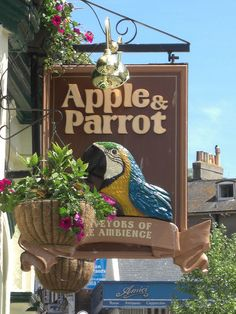 Apple and Parrot Pub Sign Torquay