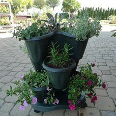 Set Triola, 3 květináče a miska s kolečky Plants, Plant, Planets