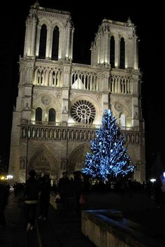 Plays With Needles: Christmas in Paris