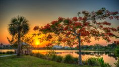 Residential Land for Sale in Poinciana, Florida - Land Century