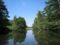 Bolter Kanal