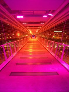 Skybridge pink/orange