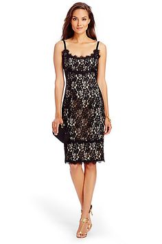 279dbd247259ae DVF Olivia Lace Dress in in Black  Nude Lace Overlay