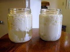 Cura pela Natureza.com.br: Receita de kefir, bebida probiótica muito superior ao iogurte