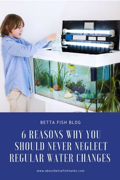 """""""If you want to always see your beautiful fish swimming in your aquarium tank happily and healthily, you should never neglect the important task of cleaning your aquarium tank and making regular water changes. Visit us to find out why it is so important. Tropical Fish Aquarium, Freshwater Aquarium Fish, Saltwater Aquarium, Aquarium Fish Tank, Planted Aquarium, Aquarium House, Fish Aquariums, Betta Fish Tank, Fish Tanks"""