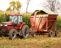 Small scale silage production for chickens. Looks very easy-cut grass, double bag before it wilts, make sure to squeeze out all the air.
