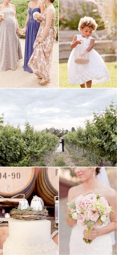 wine country wedding by erin hearts court