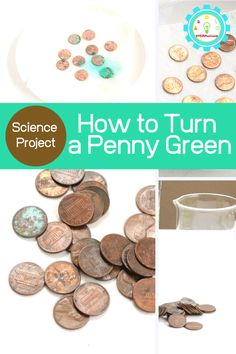 I love science experiments for kids that are easy but have impressive results like this how to turn a penny green science project, plus kids get to learn why pennies turn green at the same time! Cool Science Experiments, Easy Science, Science Fair Projects, Stem Activities, Activities For Kids, Activity Ideas, Summer Science, Kids Learning, Pennies