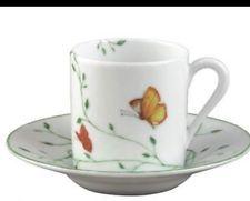 Tasses Porcelain Raynaud Neuve - Histoire Naturelle