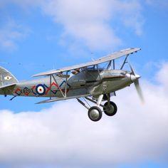 'Hawker Demon K8203' on Picfair.com Photograph by Martin Wilkinson