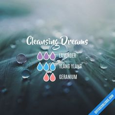 Chasing Dreams Essential Oil diffuser Blend