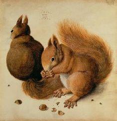 Albrecht Dürer - Ecureuils ۞۞۞۞۞۞۞۞۞۞۞۞۞۞ Gaby-Féerie : ses bijoux à thèmes ➜ http://www.alittlemarket.com/boutique/gaby_feerie-132444.html ۞۞۞۞۞۞۞۞۞۞۞۞۞۞