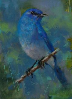 Mountain Bluebird by Mike Beeman Pastel ~ 8 x 6