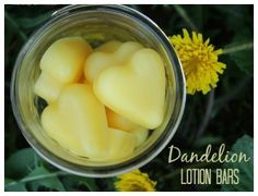 Whipped Dandelion lotion