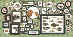 ZOO: behang 'dierenkabinet' afmetingen 5m x 2.6m / wallpaper 'cabinet of animals' size 5m x 2.6m