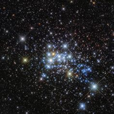 This beautiful Hubble image reveals a young super star cluster known as Westerlund 1, only 15,000 light-years away in our Milky Way neighborhood, yet home to one of the largest stars ever discovered.