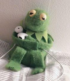 squidward tortellini on - Kermit the Frog Memes Cartoon Wallpaper, Iphone Wallpaper, Sapo Kermit, Memes Spongebob, Cute Love Memes, Kermit The Frog, Mood Pics, Wholesome Memes, Meme Faces