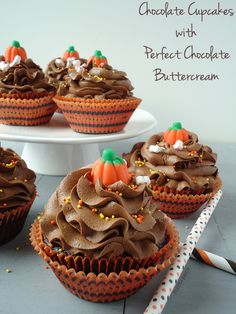 Chocolate Cupcakes with Perfect Chocolate Buttercream