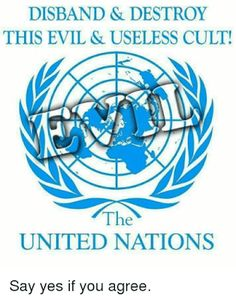 r/The_Donald - Disband this sick and twisted cult! Sharia Law, Destroyer Of Worlds, Innocent Man, Liberal Politics, United Nations, Quotable Quotes, Wake Up, Lynch, Constitution
