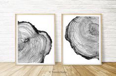 Tree Ring Set of 2 Printable Wall Art_Tree Stump_Wood Slice_Black White Instant Digital Print Download_Modern Farmhouse Art_Nordic Prints