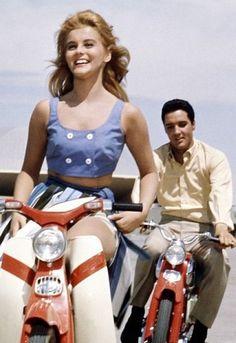 Elvis Presley and Ann-Margret - Viva Las Vegas - 1964 - Va-Va Voom. Lisa Marie Presley, Priscilla Presley, Vintage Hollywood, Hollywood Glamour, Hollywood Stars, Hollywood Icons, Hollywood Actresses, Classic Hollywood, Mississippi
