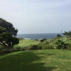 Soon back at Buenavista #golf #golfcourse #tenerife #buenavista #balesteros #mylife #
