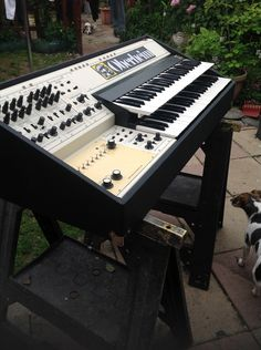 Oberheim Electronics ~ custom case