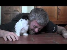 He Got Down On the Floor with His Puppy. Nothing Can Prepare You for What Happens Next!