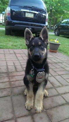 Future deputy, adorable