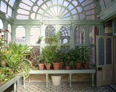 Conservatory, winter garden
