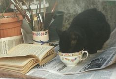 Tea time with black cat funny photo by Abril Peiretti Nothing like a nice cup while reading! Cat Lady, Aesthetic Pictures, Cute Cats, Adorable Kittens, Besties, Cute Animals, Cottage, Painting, Black Cats