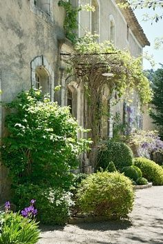 Location Vacances Manoir / Chateau Buoux Back Gardens, Small Gardens,  Country Lifestyle, Garden
