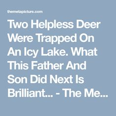 Two Helpless Deer Were Trapped On An Icy Lake. What This Father And Son Did Next Is Brilliant... - The Meta Picture