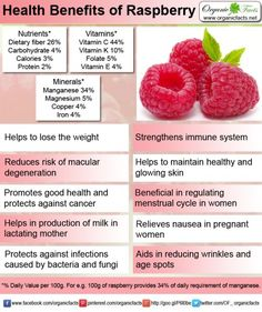 Raspberries are rich in vitamins, antioxidants and fiber with many health benefits. These berries have high concentrations of ellagic acid, a phenolic compound that prevents cancer. It helps to boost body immunity; these berries are excellent for menstrual problems. They promote pregnant and lactating mothers health. Raspberries also improve vision and keep a radiant skin.