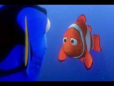Finding Nemo luborges