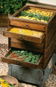 Drying herbs - and here's a suggestion about how to build your own drying racks http://www.gardenguides.com/97990-make-herb-drying-racks.html #herbgardening