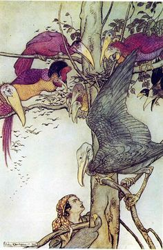 The birds show the young man the white dove's nest; What came of picking flowers - The Allies' Fairy Book, 1916