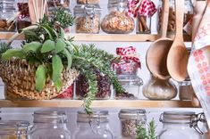 Stocking a Traditional Foods Pantry: What to Buy, Where to Buy It & How to Use It - The Nourished Kitchen