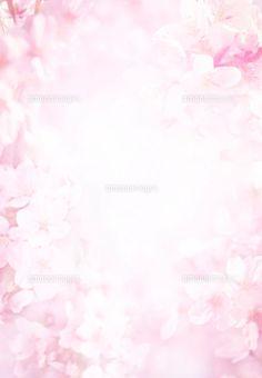 桜のイメージ (c)R.CREATION/orion
