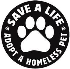 Fantastic NO KILL Shelter for animals!