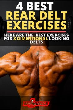 Check out our article on the best rear delt exercises and rear delt workout you can do for looking shoulders. Gym Workout Chart, Gym Workout Tips, Workout Plans, Fitness Workouts, Fitness Motivation, Best Shoulder Workout, Shoulder Training, Shoulder Exercises, Fit Motivation