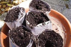 Making your own seed pots doesn't have to cost an arm and a leg. Look at these handy ones made out of newspaper. From MOTHER EARTH NEWS magazine.