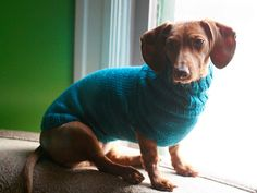 wurstwarmer! by flint knits, via Flickr