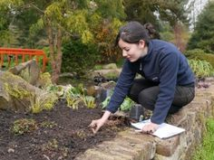 This programme has been designed for you if you have discovered a passion for horticulture and are aiming to change or develop your career in this vibrant, Enfield Middlesex, Gardening Courses, Level 3, Horticulture, September, College, University, Garden Planning, Colleges