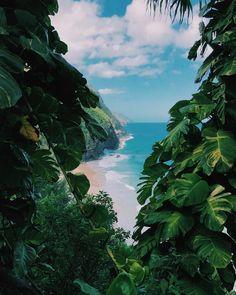 Kauai dream landscape   #Regram via @the_vista