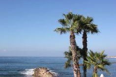 Frey de Fleur | Luxury Lifestyle Blogger | Cyprus | Almyra Hotel | Summer Inspiration