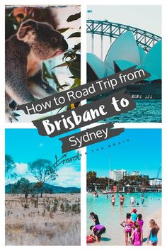 A road trip in Australia is a great way to explore and discover a variety of out of the way destinations. You can do everything in your own time, you aren't in a rush to make it to the airport or bus station, and you only have to worry about planning everything either.